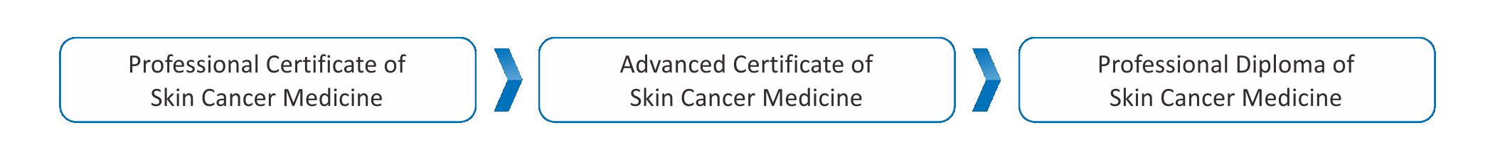 Skin Cancer Medicine Course Pathway